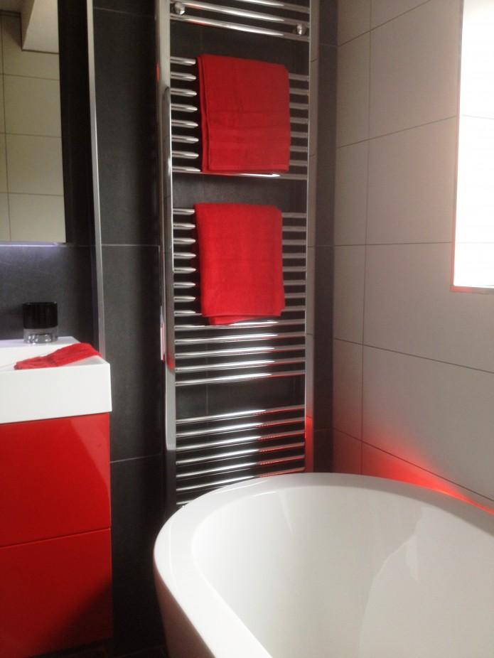 Domestic bathroom project. Colour scheme built around Proclad Dark Cherry panels.